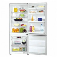 Fridges Section